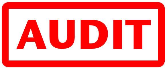 Audit steps